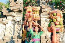 バリの女性は皆これが出来ます強者はなんとフリーハンド・・・筆者も挑戦しましたが自前の頚椎ヘルニアが再発しそうで即ギブアップしました(笑)お祭りの時などに女性陣がこのフルーツタワーを頭に乗せ列をなして歩いてる姿は壮観です#bali #バリ島 #バリ島ガイド