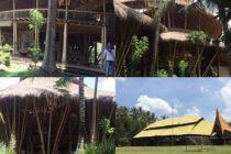 究極のエコ&ナチュラルを貫くバリ島のインターナショナルスクール「Green School」食事は完全オーガニック極力ペーパーレスな授業やエコに対する姿勢は生半可ではありません世界中から生徒が来ており 見学ツアーも行なわれている知る人ぞ知るschoolなのです#バリ島 #bali #バリ島ガイド #エコ