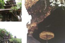 コウモリのお寺「ゴア・ラワ寺院」無数のコウモリが生息しておりバリ中腹のバリヒンズー総本山の「ブサキ寺院」とこの洞窟が繋がっているという伝説がありますクタより1時間ほどの場所に位置しています#バリ島ガイド #バリ島 #bali