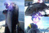 先日のお客様GT入れ食い状態2日間で9匹!!今シーズンのバリはどうかしてる?!#バリ島ガイド #バリ島 #bali #gt #gtfishing